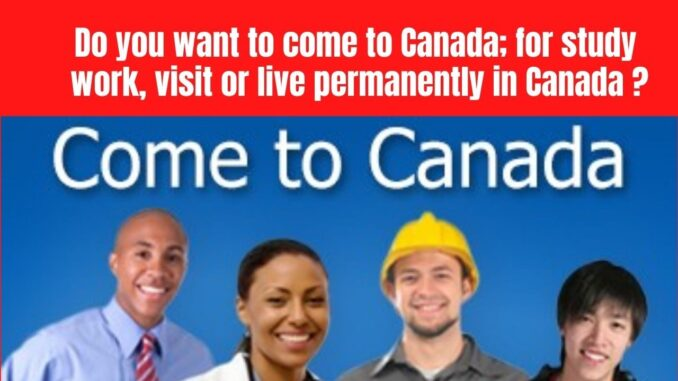 Canada announced that it will allocate $100 million to help new immigrants settle and integrate in Canada during the post-COVID-19 period.